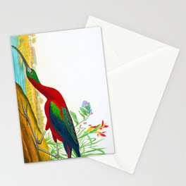 Glossy Ibis Bird Stationery Cards