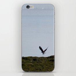 Osprey In Flight on the Ocean iPhone Skin