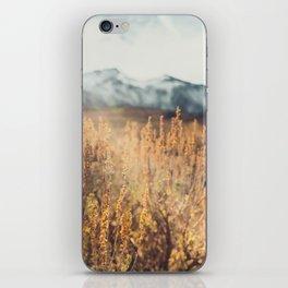 Eastern Sierras No 473 iPhone Skin