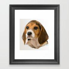 Beagle Pup Framed Art Print