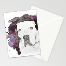 Portland Dog Stationery Cards