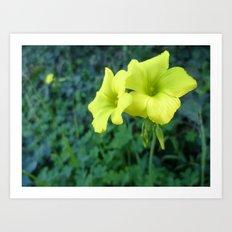 Singing in Yellow Art Print