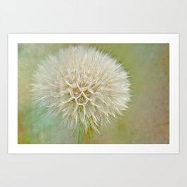 Dandelion Daydream Art Print