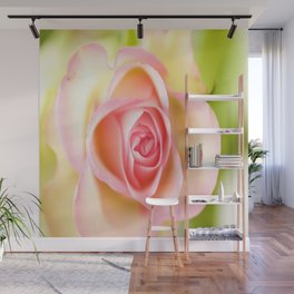 Lovely delicate pink rose Wall Mural