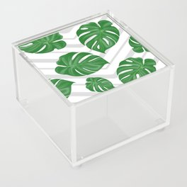 Monstera on chevrons Acrylic Box