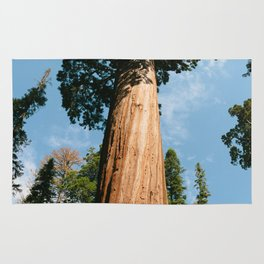 General Sherman Tree Rug