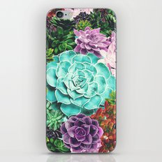 Succulent iPhone & iPod Skin