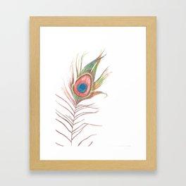 Peacock Bird Feather Art Framed Art Print
