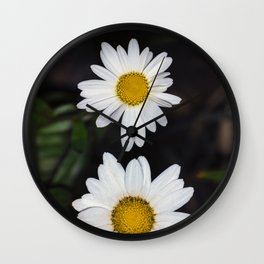 Young And Old Daisies Wall Clock