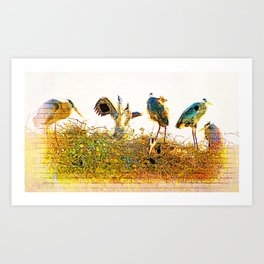 Nest Building At The Rookery Art Print
