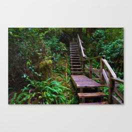 Staircase to heaven Canvas Print