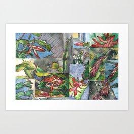 Christmas Cactus - Watecolor Painting Collage / Botanical Art / Floral Illustratin Art Print