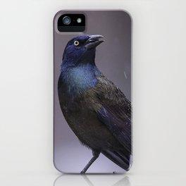 Grackle iPhone Case