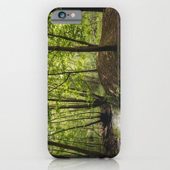 Small woodland stream. iPhone & iPod Case