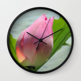 Lotus Bud in West Lake Wall Clock