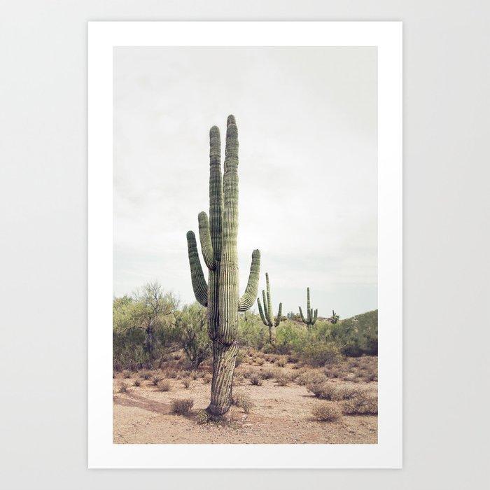 Desert Cactus Kunstdrucke