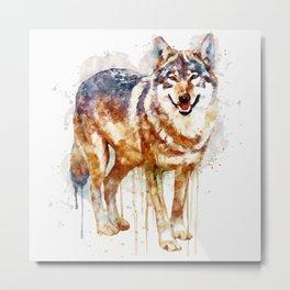 Alpha Wolf Metal Print