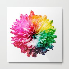 Color flower 2 Metal Print