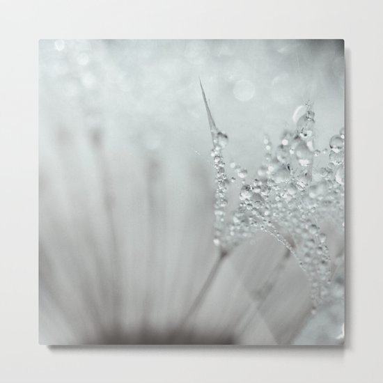 silver dreams Metal Print