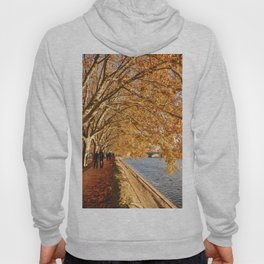Autumn walk in France Hoody