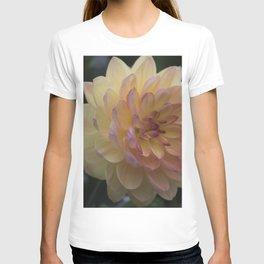 Longwood Gardens Autumn Series 390 T-shirt