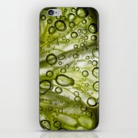 lime iPhone & iPod Skins featuring Lime by Ryan Zimmermann