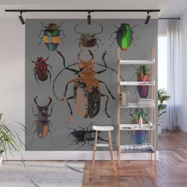 NATURE LOVERS BEETLE BUG COLLECTION ART Wall Mural