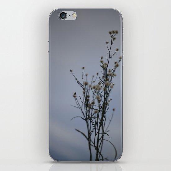 Autumn-Dandelion iPhone & iPod Skin