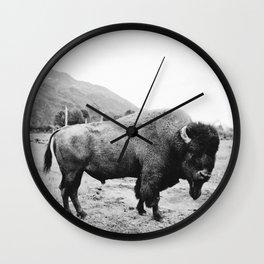 Alaska Bison Wall Clock