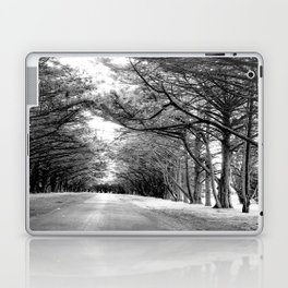 The Black & White Forest Laptop & iPad Skin