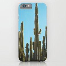 Cactus Slim Case iPhone 6s