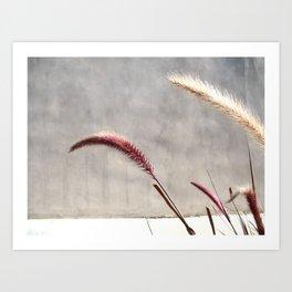 brentwood weeds Art Print