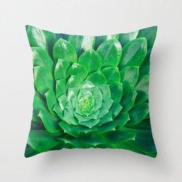 Botanical Gardens - Succulent #686 Throw Pillow