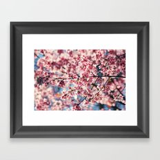 Painting the Town Pink Framed Art Print