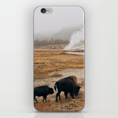 Mother Bison and Calf in Yellowstone National Park iPhone & iPod Skin