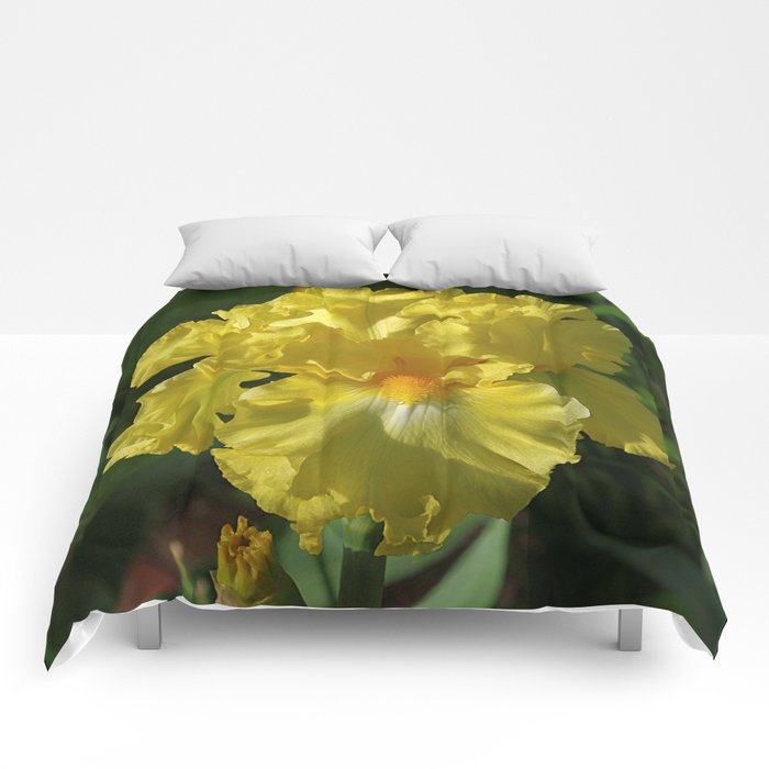 Golden Iris flower - 'Power of One' Comforters