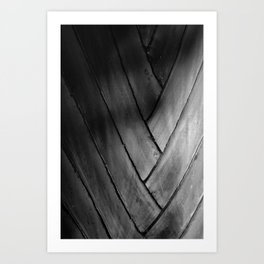 crossings Art Print