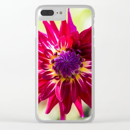 Dahlia / In The Garden / 7 Clear iPhone Case
