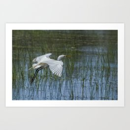 Grace Over Water Art Print