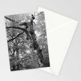 Menacing Forest Stationery Cards