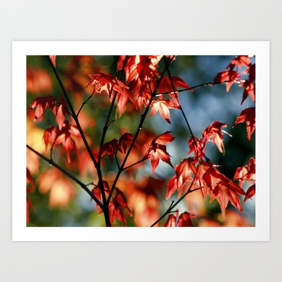 flora in flame Art Print