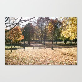 Autumn in Bellwoods Canvas Print