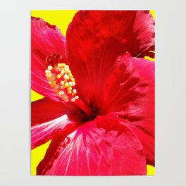 red on the yellow Poster