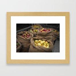 Cider Apples  Framed Art Print