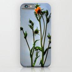 Compass Plant Slim Case iPhone 6s
