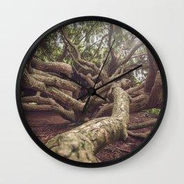 Wild Tree Roots Wall Clock
