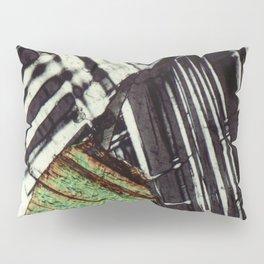 Feldspar and Biotite Pillow Sham