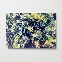 JUNIPER BERRIES Metal Print