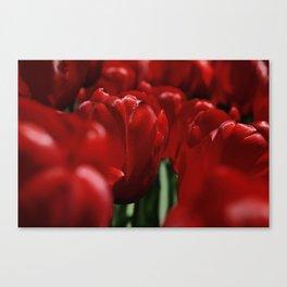 Tulipes a NY Canvas Print