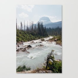 whitewater. Canvas Print